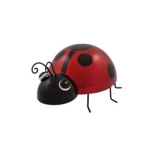 ladybird gift